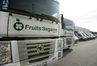 FRUITS SAGARRA GRUP